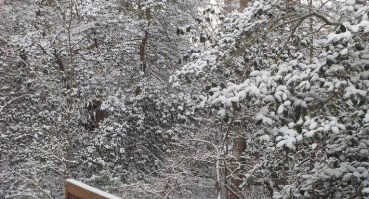 Katy and The Big Snow  (FIAR)