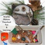 Teaching Preschool Letter N