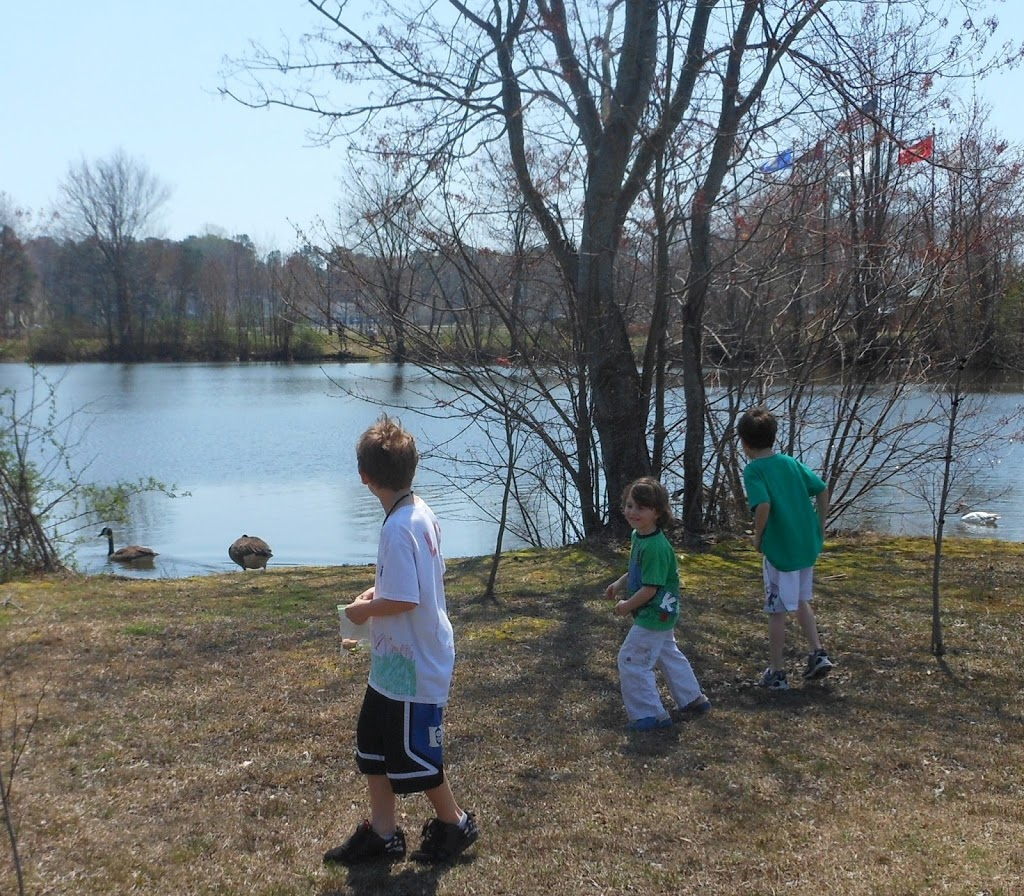 A day at the pond, science, pond life, nature walks, scavenger hunts, natural living. www.naturalbeachliving.com