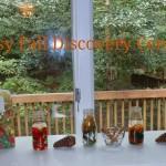 Early Fall Sensory Discovery Table