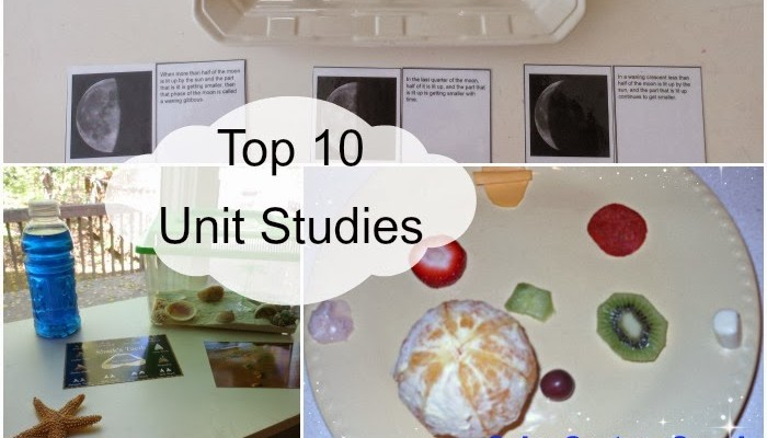 Top 10 Unit studies from 2013