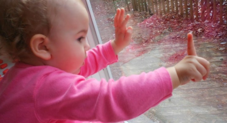 Nature through a Toddlers Eyes