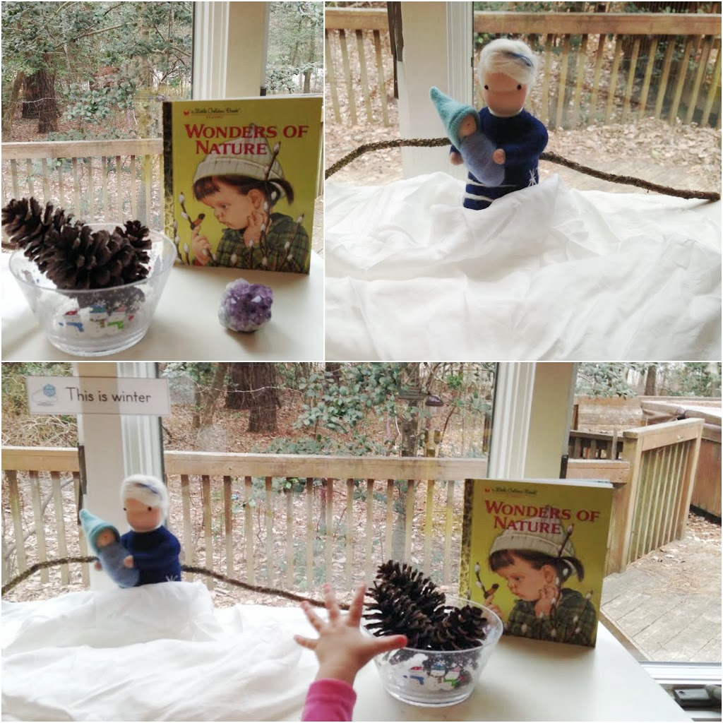 Winter nature table - You Always Have To Have A Few Nature Books On Your Shelves So For This Table I Choose Wonders Of Nature Little Golden Book To Go Along With It A Winter