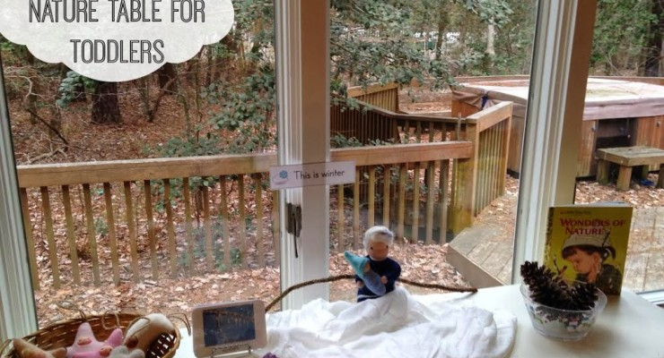 The Perfect Winter Nature Table for Toddlers