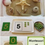 Montessori at Home Activities