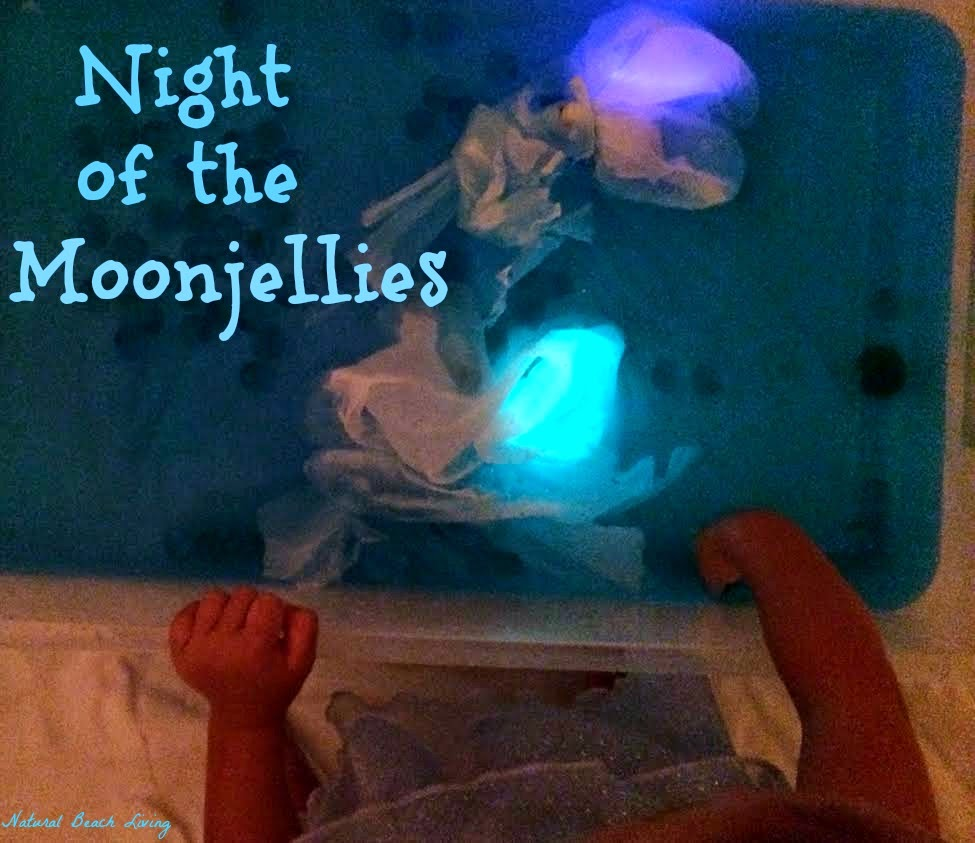 Night of the Moonjellies Part 2 Jellyfish Sensory Bin & Jellyfish Craft (FIAR)