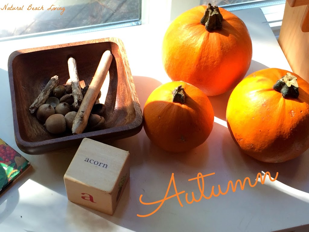 Lovely Nature Activities for October, Waldorf, Reggio, Fall activities for kids, simple ideas for autumn fun, Pumpkin activities, Fall Activities for Kids