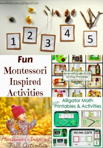 Awesome Fall Montessori Activities