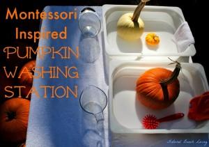Montessori Pumpkin Washing Station