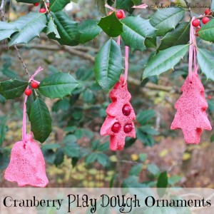 cranberry ornament