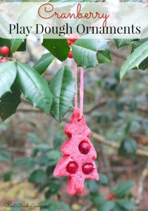 The Ultimate Christmas Cranberry Play dough Ornaments