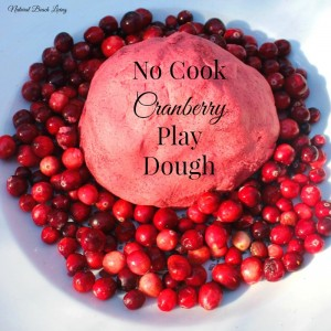 Easy No Cook Christmas Cranberry Play Dough