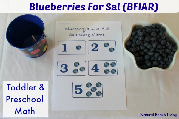 blueberries bfiar