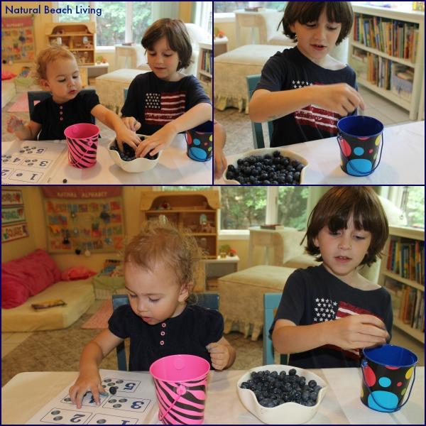 Blueberries for Sal classic literature, books, Toddler & Preschool activities, hands on learning, Math, Senses, BFIAR,Letter B Alphabet,Natural Beach Living