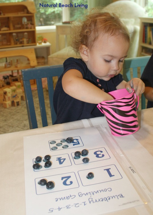 Blueberries for Sal classic literature, books, Toddler & Preschool activities, hands on learning, Math, Senses, BFIAR,Letter B Alphabet,Natural Beach Living