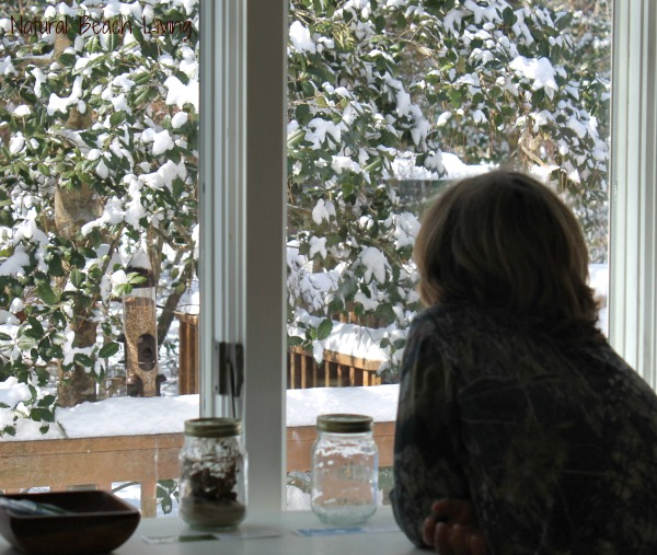 Backyard Birds, free Printables, Bird watching chart, Learning Backyard Birds and Bird Watching with Kids, Bird Activities for Preschoolers, Montessori Printables, Charlotte Mason Homeschooling, Nature Study, #bird #preschool