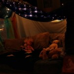 Starry Night Reading Fort