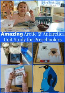 Amazing Arctic & Antarctica Activities for Preschoolers