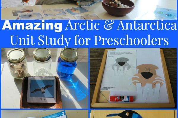 Amazing Arctic & Antarctica Activities for Preschoolers