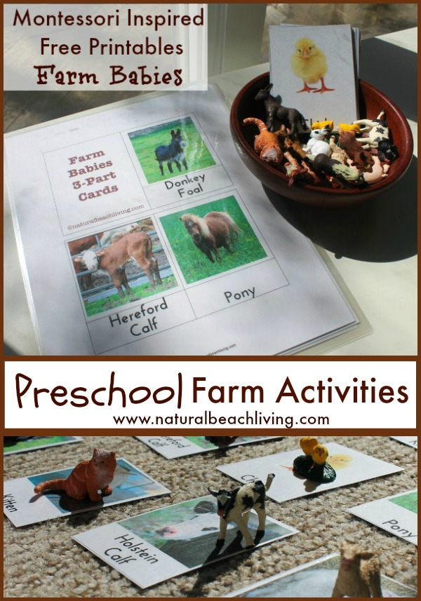 The Best Montessori Preschool Farm Activities (Free Printables)