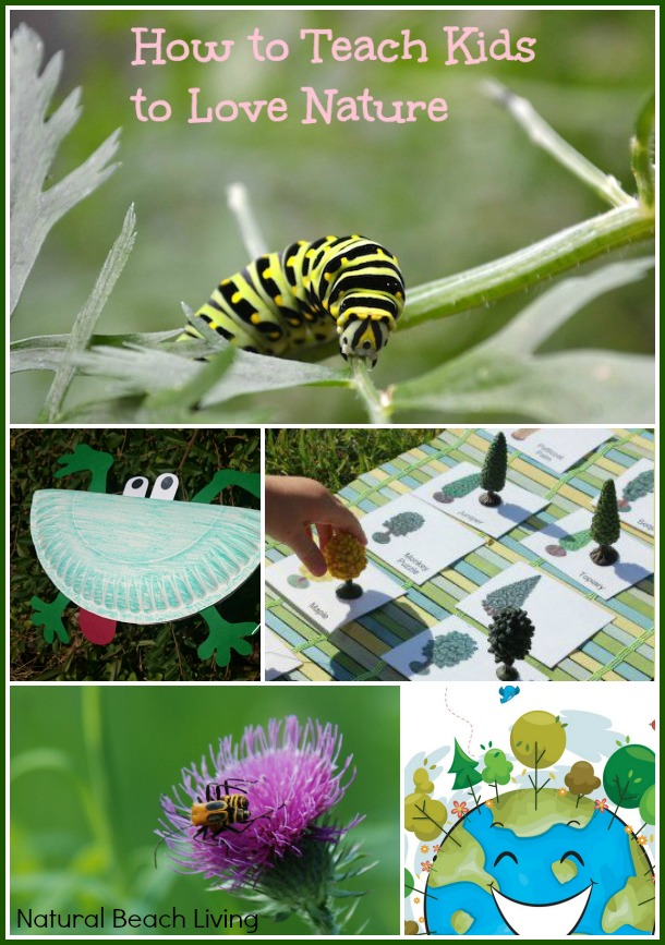 Ways to enjoy nature with kids, free printables, preschool activities, toddler, unschooling, Montessori, Charlotte Mason, trees, www.naturalbeachliving.com