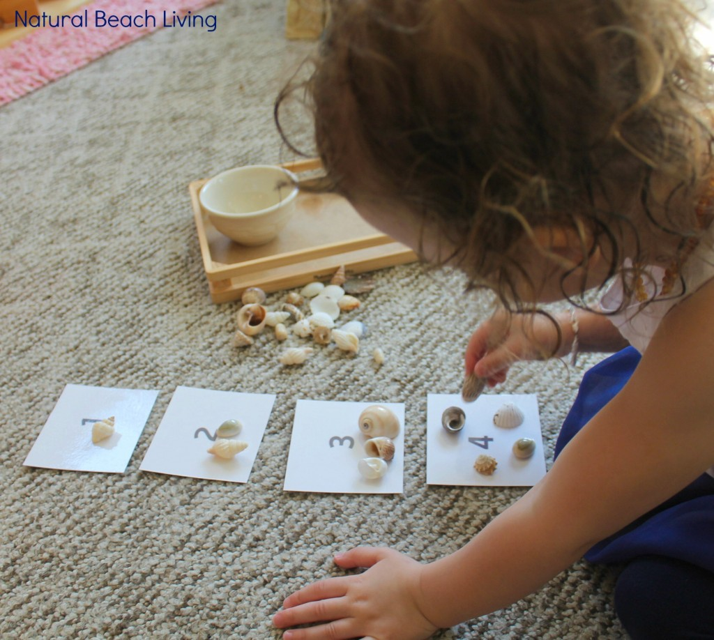 Montessori Inspired themed preschool activities, under the sea animals, practical life, sensory play, games, Alphabet craft, and more, Natural Beach Living
