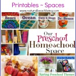 Preschool Planning Ideas (Linky 17)