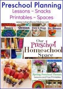Preschool Planning Ideas (Linky 17)