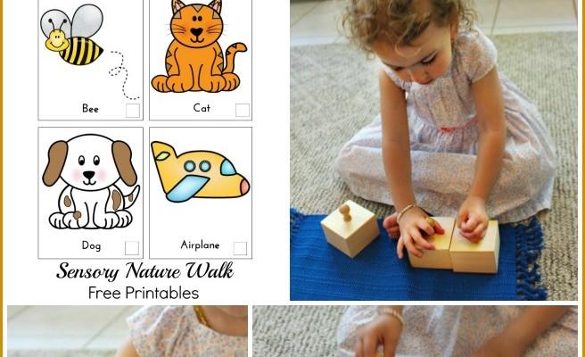 Wonderful Montessori Sensory Activities (Free Printables)
