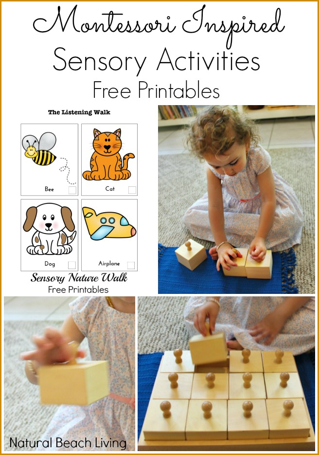 Wonderful Montessori Sensory Activities (Free Printables)