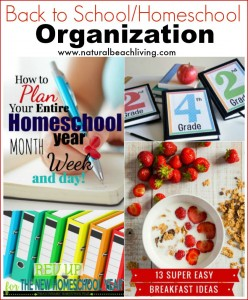 Back to School Organization (Linky 29)