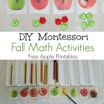 DIY Fall Montessori Math Activities (Free Printables)