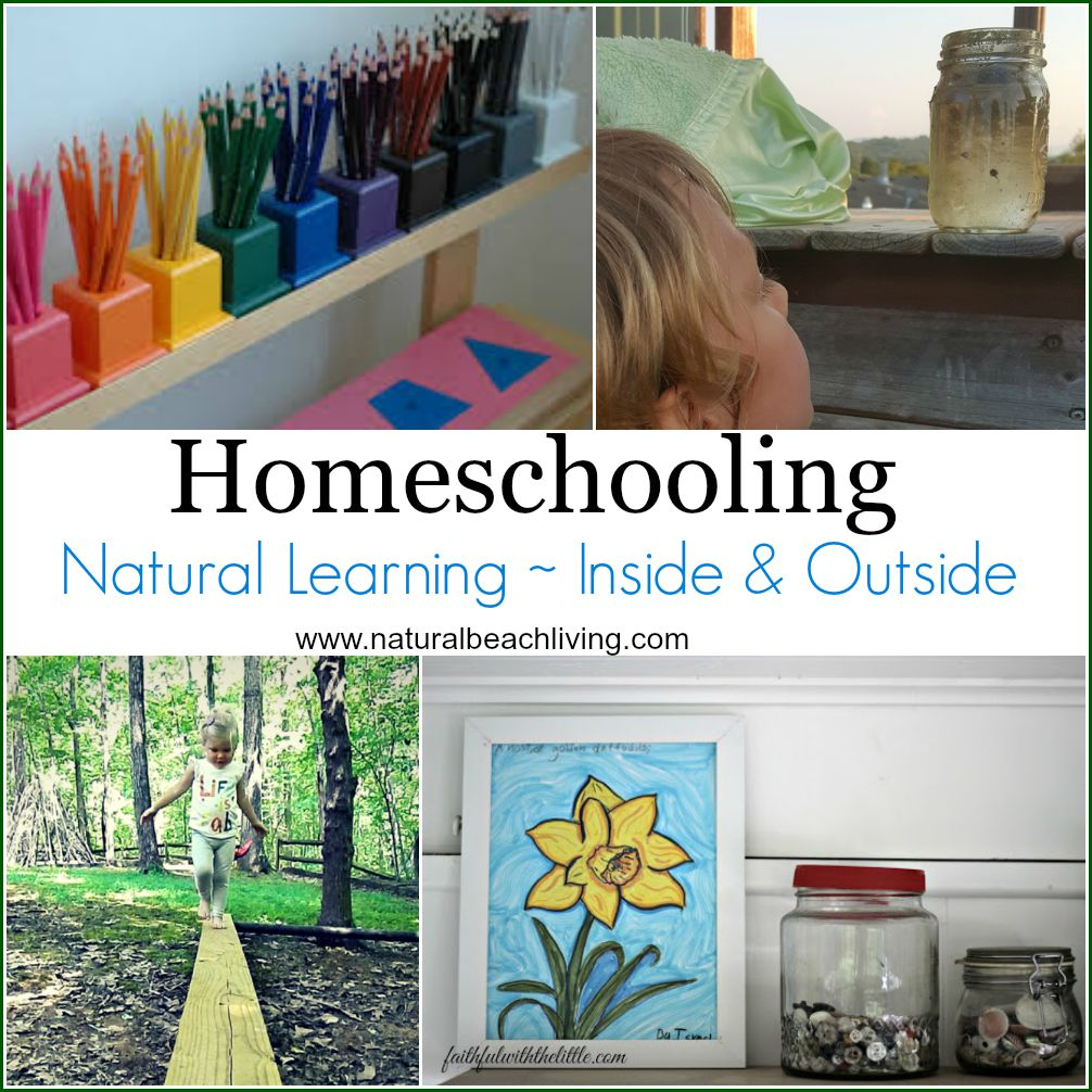 Natural learning, homeschool rooms, inside and outside nature, unschooling, Montessori, a lovely way to live and learn through nature. Great books ideas too