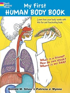 my first human anatomy book