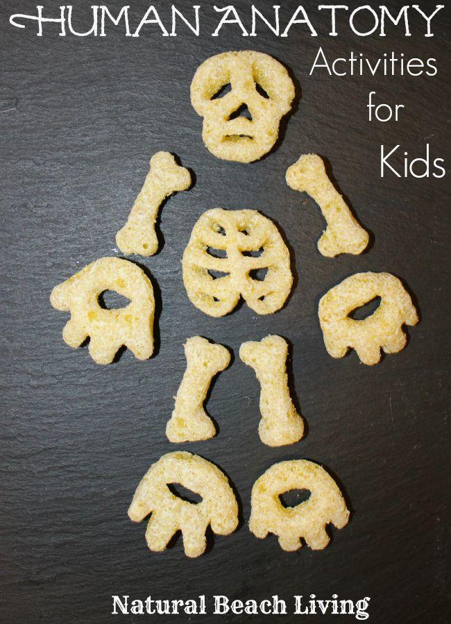Montessori Human Anatomy Activities Free Printables Natural