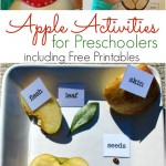 Fun Apple Activities for Preschoolers (Free Printables)