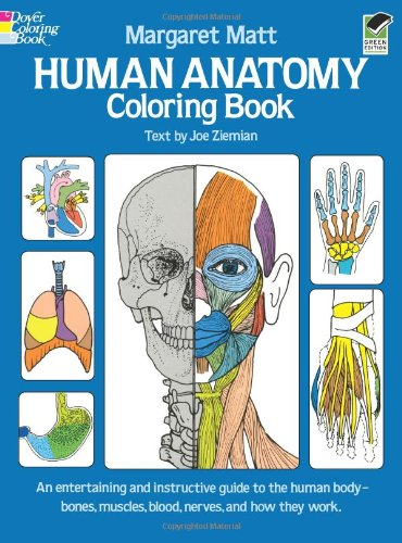 Anatomy Books Amp Learning Aids For Kids
