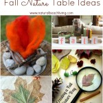 Fabulous Fall Nature Table Ideas (Linky 35)