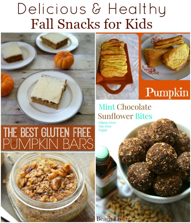 Amazingly Delicious and Healthy Fall Snacks for Kids and Adults. Gluten Free, Vegan, Pumpkin, and so much more. Yum!