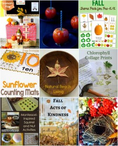 10+ Fabulous Fall Activities