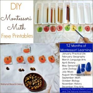 Natural Montessori Math (Free Printables)