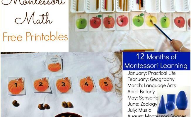 Montessori Math with Pumpkins  (Free Printables)