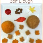 Autumn Scented Salt Dough