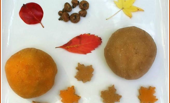 The Most Amazing Autumn Scented Salt Dough