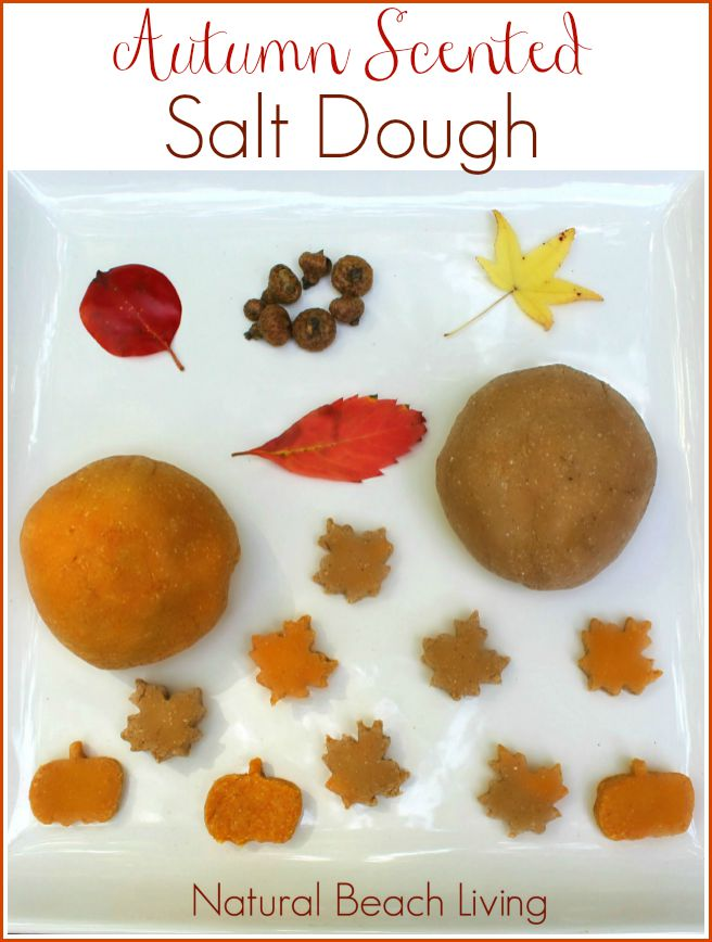 The Most Amazing Autumn Scented Salt Dough
