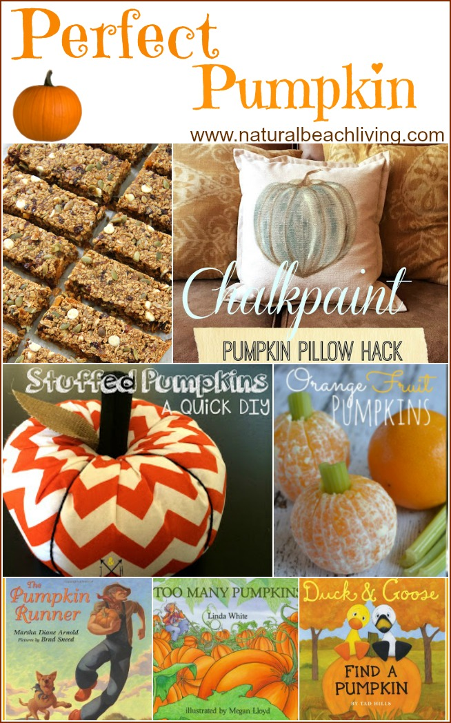 Awesome pumpkin ideas for fall or anytime of the year, Crafts, DIY, Books, and great healthy pumpkin food. You'll love these perfect ideas for fall.