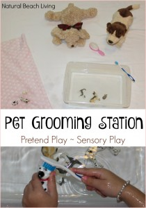 Pet Grooming Station for Kids