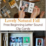 The Prettiest Fall Beginning Letter Sound Clip Cards (Free Printables)
