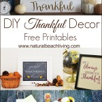 DIY Thankful Decorating Ideas