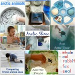 25+ Antarctic & Arctic Activities for Kids